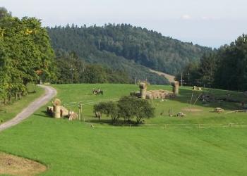 Farmapark Muchomůrka
